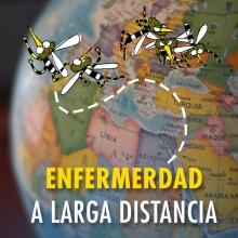 Enfermedad a larga distancia