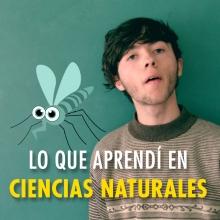 Lo que aprendí en ciencias naturales sobre el Zika